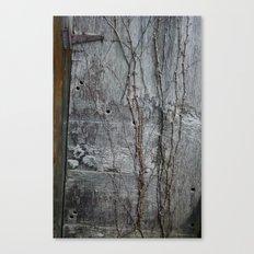 Vine and Hinge Canvas Print