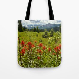 Red paintbrush with mountain view Tote Bag