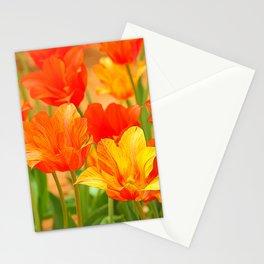 Tulip Nirvana 13 Stationery Cards