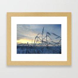 Prairie winter Framed Art Print