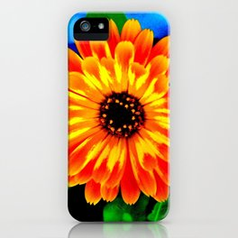 Orange Marigold iPhone Case