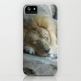 Sleeping Lion iPhone Case