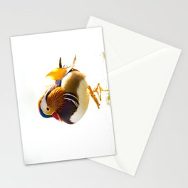 MANDARIN DUCK WALK Stationery Cards
