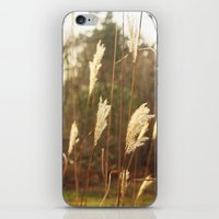country iPhone & iPod Skins featuring country by Kayleigh Rappaport
