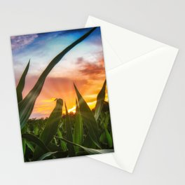 A view through the corn field at sunset Stationery Cards