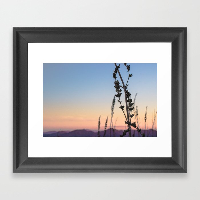 Stuff Behind Plants - Sage Silhouette Gerahmter Kunstdruck