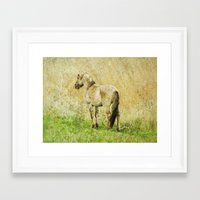 pony Framed Art Prints featuring pony by URS|foto+art