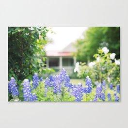Brenham Bluebonnets - Brenham, Texas Canvas Print