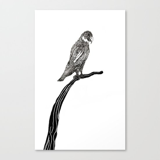 Perch Canvas Print