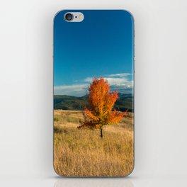 Simple Fall Tree iPhone Skin