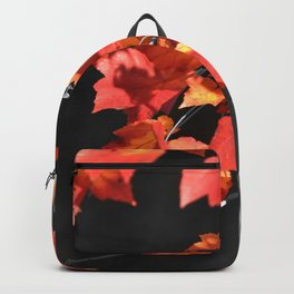 Cold Fall Backpack