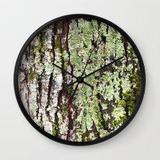 Tree Bark Lichen Wall Clock