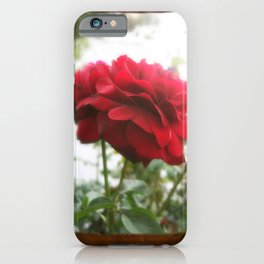 Red Rose with Light 1 Blank P3F0 iPhone Case
