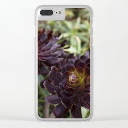 Aeonium Detail Clear iPhone Case
