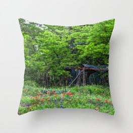PaintBrush & Shed Throw Pillow