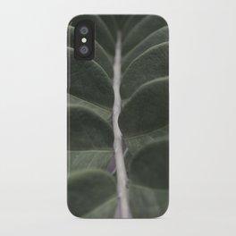 Money Plant iPhone Case