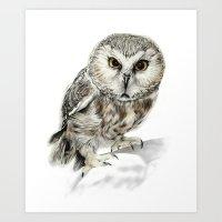 Rescue Owl Art Print