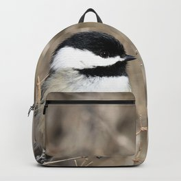 Feather weight Backpack