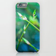 Spring Has Sprung iPhone 6s Slim Case