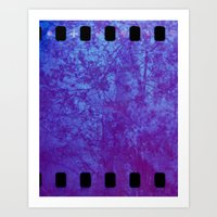 Pink & Purple Blossoms Art Print