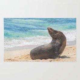 Sea lion sunbathing on beach Rug