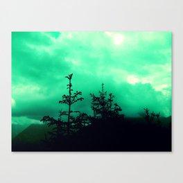 caligo in monte Canvas Print