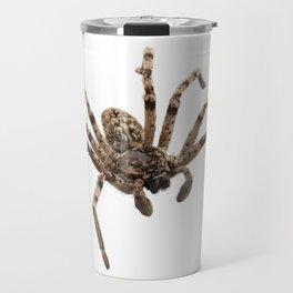 Wolf spider lycosa sp Travel Mug