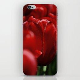 Tulipes a NY iPhone Skin