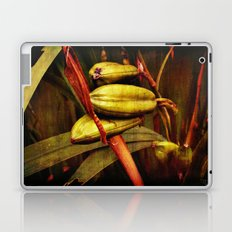 Hanging over the pond Laptop & iPad Skin
