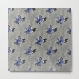 Butterflies on wooden surface Metal Print