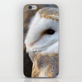 Barn Owl portrait iPhone Skin