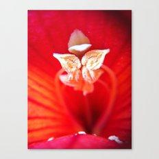 Florotica Canvas Print