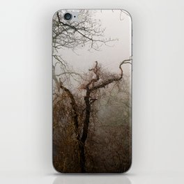 Misty Morning in Scotland iPhone Skin