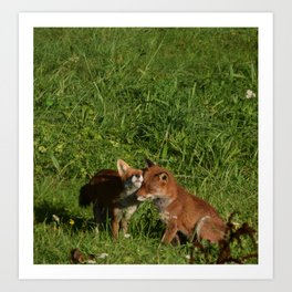 Mr & Mrs Fox Art Print