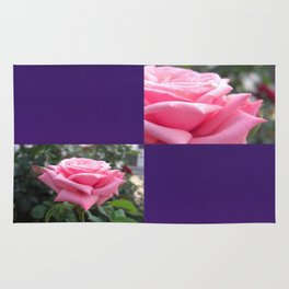 Pink Roses in Anzures 6 Blank Q9F0 Rug