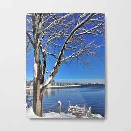 Buoy Hanging from a Snow-Kissed Tree in Maine (2) Metal Print