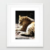 cheetah Framed Art Prints featuring Cheetah by Vicky Rosado