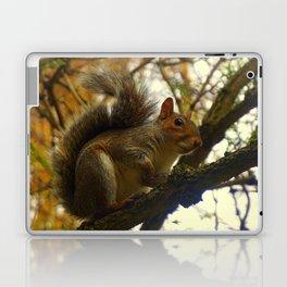 Squirrel! Laptop & iPad Skin