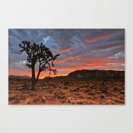 Joshua Tree Sunrise Canvas Print