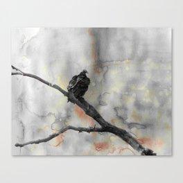 Perched Vulture Canvas Print