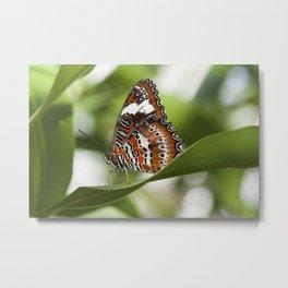 Orange Lacewing BUTTERFLY Metal Print