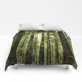 Humboltd Redwoods State Park Comforters