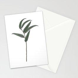 Eucalyptus Love  Stationery Cards