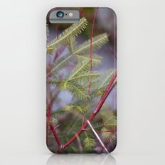 Red & Green iPhone 6s Slim Case
