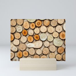 Wooden Circles And Shapes Mini Art Print