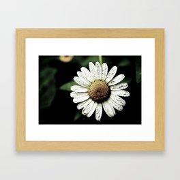 Margarida Framed Art Print