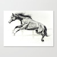 horse Canvas Prints featuring Horse by Anna Shell