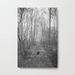 Black cat alone in the forest Metal Print
