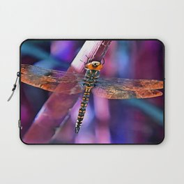 Dragonfly In Orange and Blue Laptop Sleeve