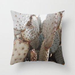 Cactus Closeup 3 Throw Pillow